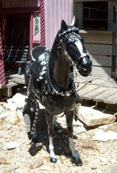 silver parade woned by Boston K.