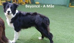Beyonce - A Mae