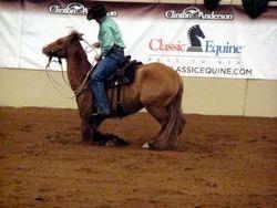 CA Clinic Lexington Feb 27-28 2010