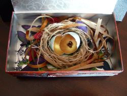 More to Grow - assemblage box (inner)