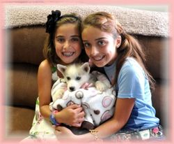 Miya & Bears Puppy