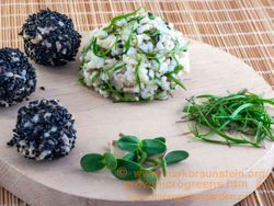 FENNEL microgreens & brown rice balls with Sunflower microgreens