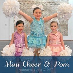 Mini Cheer Team