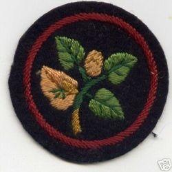 Beech Ranger Patrol Badge