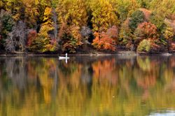 Lake Needwood, Autumn 1