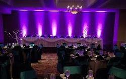 Special Purple Up-Lighting