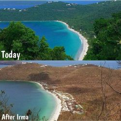 Magens Bay after the hurricanes & now