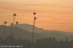 Santa Anita Sunrise