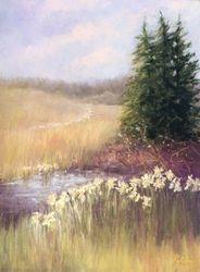 Wetland Daffodils