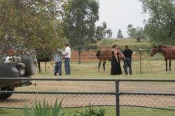 Brad and Deb ...talking horses