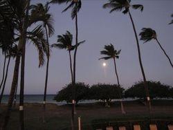 Morning Moon Setting