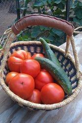 Fresh veggies from my garden