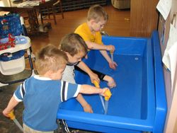turkey basters in the water table