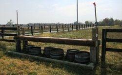 Fenceline Table--Novice adjustable up to Training