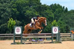 Seefari - Low Schooling Jumper 3', Sunday Funday Jumper Show