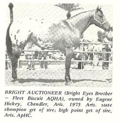 Bright Auctioneer