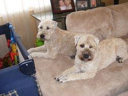 Best friends Plum and Beck!