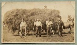 Men Harvesting Hay