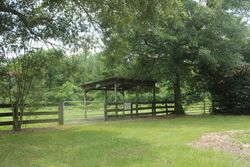 Lean to for Front Pasture