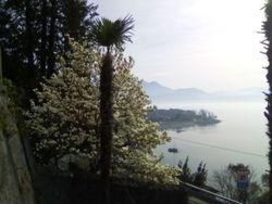 Cannero Riviera (VB)