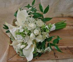 Nancy Powell Wedding
