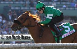 Caracortado wins the Sunshine Millions Turf