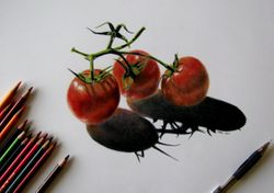 Tomatoes-Work in progress