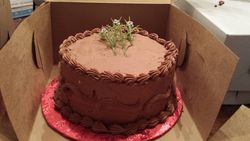 Chocolate on yellow cake