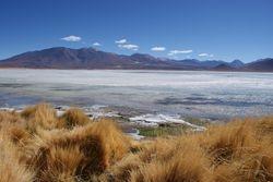 Altiplano, Bolivia 4