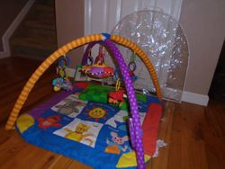 Baby Einstein Discover & Play Activity Gym - $30