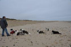 Dreamwork celebrate the New Year on the beach