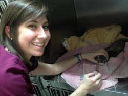 Allison feeding a ferret