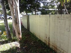 Front Fence Before