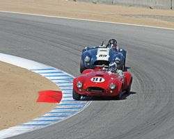 1962-1967 Shelby Cobra Cars