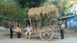 Preparando la carroza