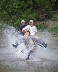 Holly and DP racing across the river