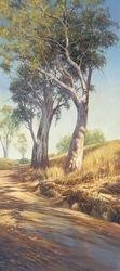 Flinders Gums