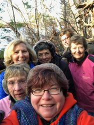 Walking group out for a stroll in the woods....