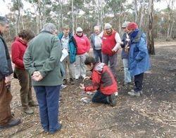 Alison Pouliot Fungi Field Trip