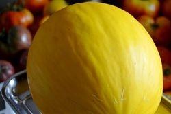 Ripe Canary Melon