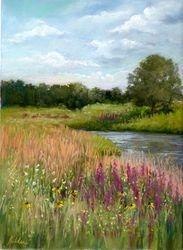 Dexter Millpond Wildflowers