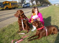 A girl and her dogs 2010