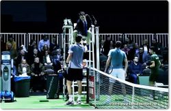 Tomas Berdych shakes hands with umpire