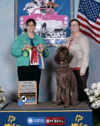 Penny winning second place in Rally Excellent B and earning her RE title at PCA National Specialty.  4/26/11.