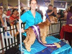 Brisbane Royal Show 2013