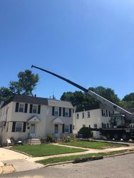 Removing large Maple tree with 55 ton crane in Swarthmore PA