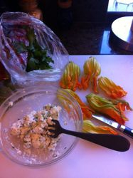 Preparing Squash Blossoms