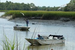 Shrimpers on Wallace Creek