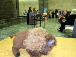 Millard the Buffalo is so proud to be a delegate to New York Association on Independent Living?s 2014 Legislative Day!