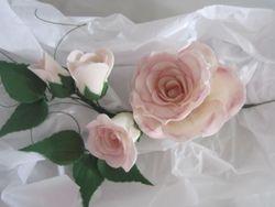 Rose class 1/19/13